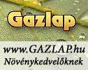 gazlap