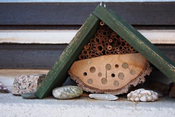 MME – Méhecske hotelekkel védhetjük a beporzó rovarokat