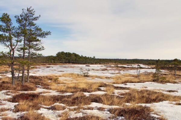 Eltűnik a tél Európában, ha ebben az ütemben melegszik a klíma